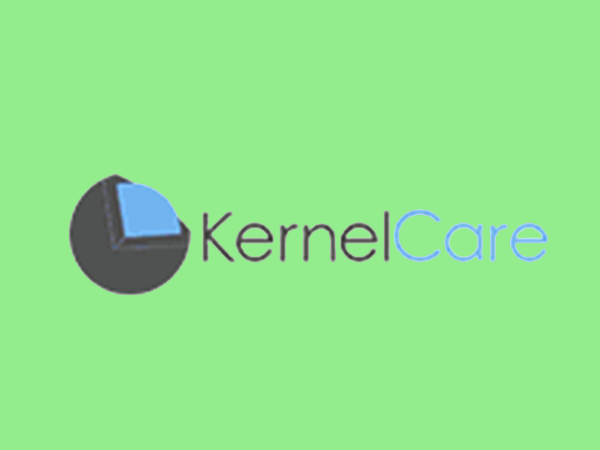 Best Kernel Protection for your server